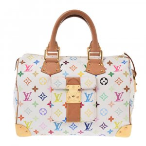 Louis Vuitton Multicolor Speedy 30 Bron
