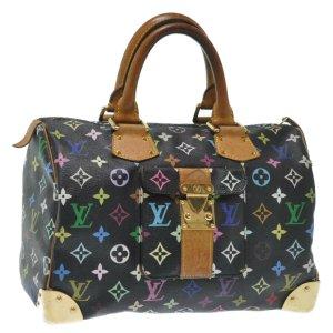 Louis Vuitton Speedy 30 Multicolor