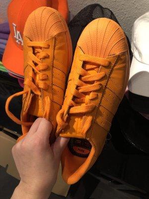 Adidas superstar Basket à lacet orange fluo-orange