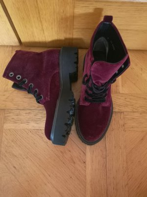 Kennel & Schmenger Ankle Boots black-purple