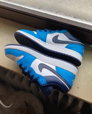 Air Jordan Skater Shoes multicolored