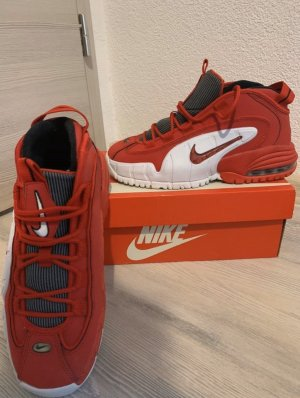 Nike Air Max (Limited Edition)
