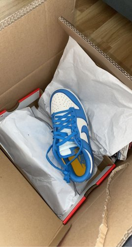 Nike dunk low coast NEU