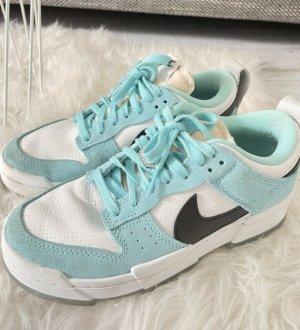 Nike Dunks Low