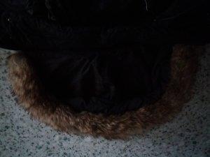 Nur mit Daunen gefühlt Mantel mit großer  Kapuze  gr 38 fählt aus wie 40/42