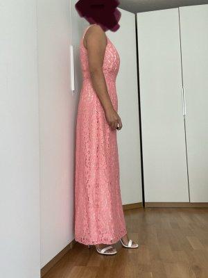 Oasis Kleid Spitze rosa