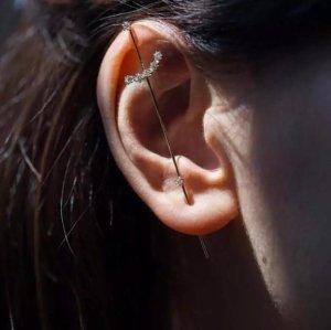 Clou d'oreille argenté-doré