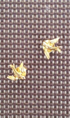 Ohrstecker aus Sterling-Silber vergoldet, Schwalbe / Vogel, NEU