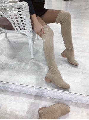 Botas sobre la rodilla multicolor