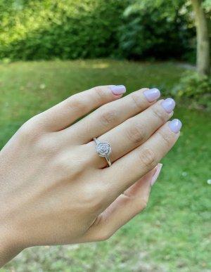 Pandora Rose Ring Silber 925