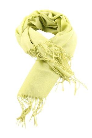 Pashmina Fransenschal grün Casual-Look