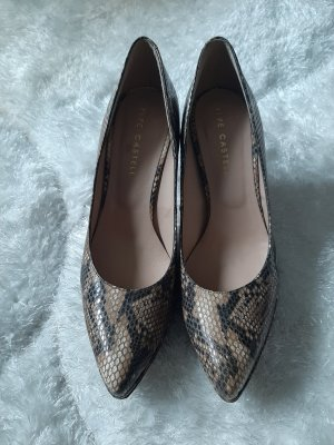 pepe castell , reptil,NP 280€