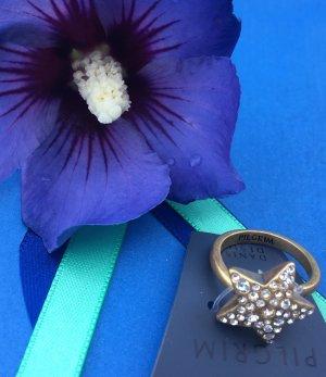 Pilgrim Ring Stern