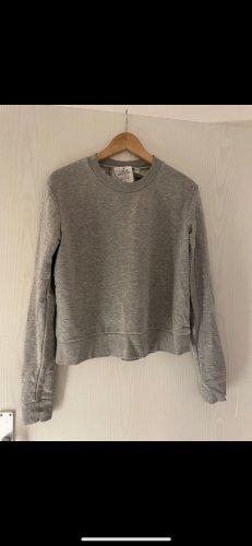 Cheap Monday Sweter z okrągłym dekoltem jasnoszary-szary
