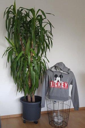 Pullover mit Kaputze,,Mickey Mouse Größe: 36