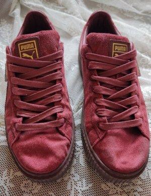 Puma Creepers Velvet Red Sneaker