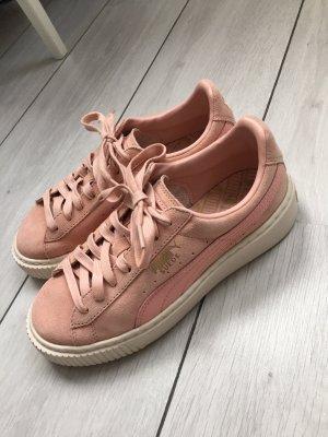 Puma Schuhe 'Suede'