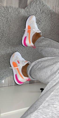Puma Chaussure skate multicolore