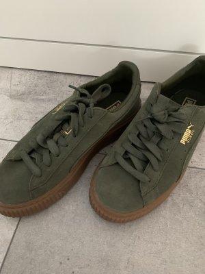 Puma Sneaker•Wildledee•khakiGr.38