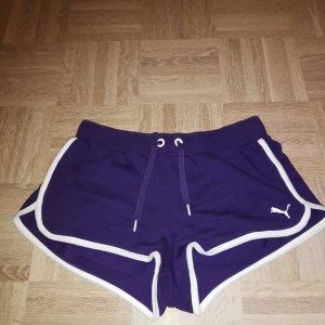 Puma Sporthose Hotpants Sprinterhose lila S 36