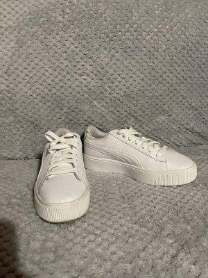Puma Weiß