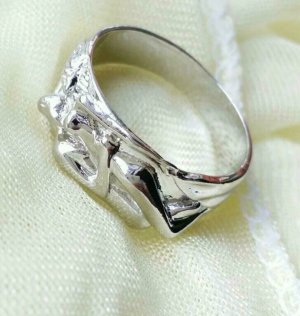 Silver Ring silver-colored