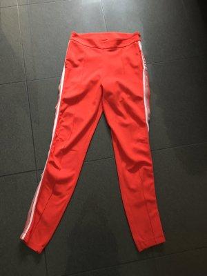 Rich & Royal Spodnie dresowe pomarańczowy Bawełna