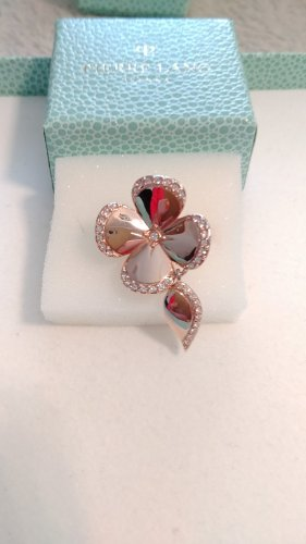 Pierre Lang Statement Ring rose-gold-coloured