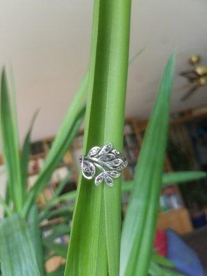 Ring in Blattform