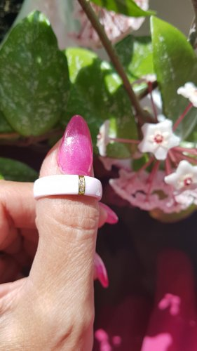 Blueberry Partner Ring gold-colored-light pink