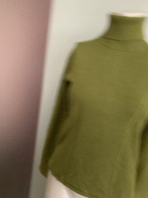 Biba Turtleneck Sweater olive green