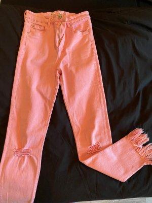 Zara Jeans boyfriend rose