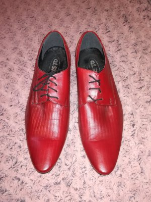 Wingtip Shoes multicolored