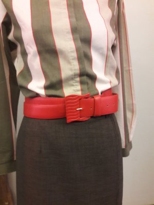 Hip Belt red-bright red