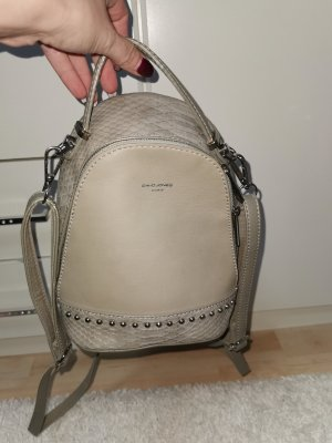 David Jones Trekking Backpack silver-colored