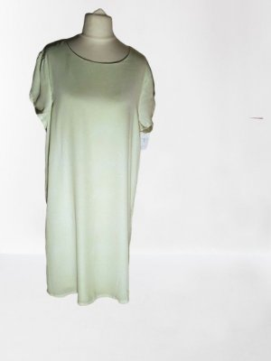 Angel Eye Sheath Dress pale green