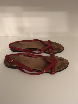 Prada Romeinse sandalen veelkleurig