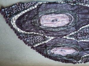 Cecil Crinkle Scarf multicolored