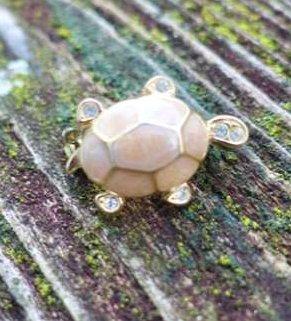 Schildkröten Emailbrosche