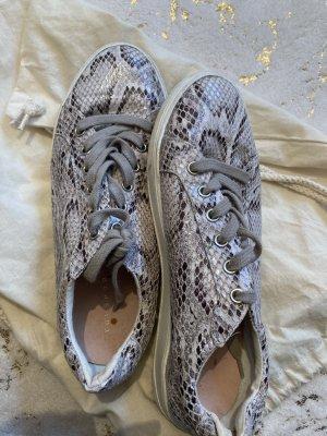 Schuhe mit schönem Schlangenmuster