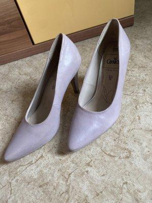 Caprice Spitse pumps paars-azuur