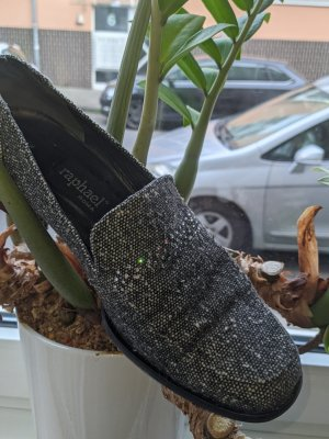 RAFAEL Chaussure Oxford gris