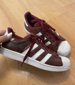 Schuhe, Sneaker, Adidas Superstar, Schlangenmuster, Weinrot