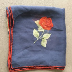 ascot Neckerchief blue-red