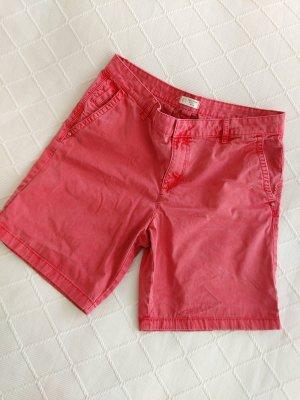 Esprit Shorts raspberry-red-pink
