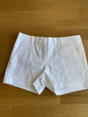 Shorts im Anzughose Stiel