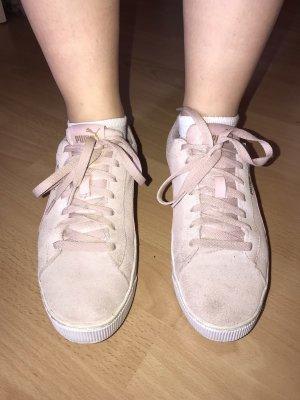 Puma Zapatos de patinador rosa empolvado-rosa