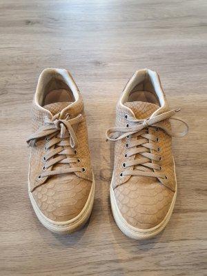 Sneaker von COX