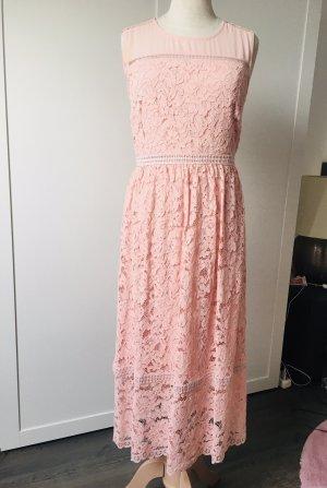 Hallhuber Koronkowa sukienka Wielokolorowy