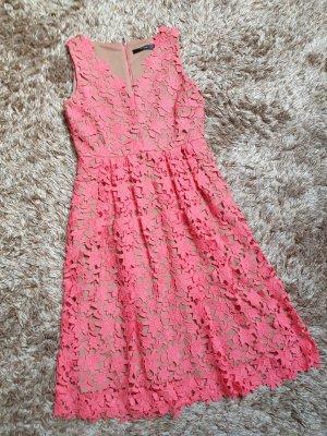 Hallhuber Koronkowa sukienka nude-łosowiowy